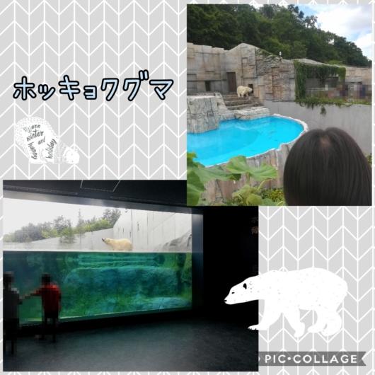 子連れ旅行札幌市円山動物園ホッキョクグマ館