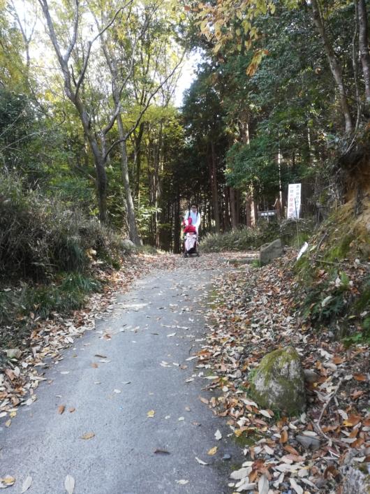 子連れ旅行京都紅葉瑠璃光院から蓮華寺へのアクセス