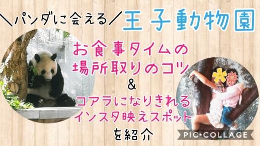 王子動物園パンダに会えるお食事タイムの場所取りのコツ子どもがコアラになりきれるインスタ映えスポット