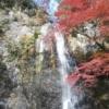 子連れ旅行紅葉箕面大滝