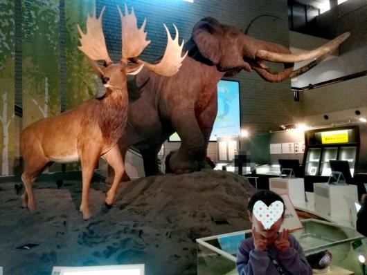 子連れお出かけ子連れ旅行大阪市立自然史博物館ナウマンホールナウマンゾウ