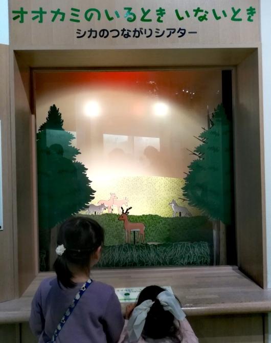 子連れお出かけ子連れ旅行大阪市立自然史博物館第5展示室遊びながら学ぶシアター