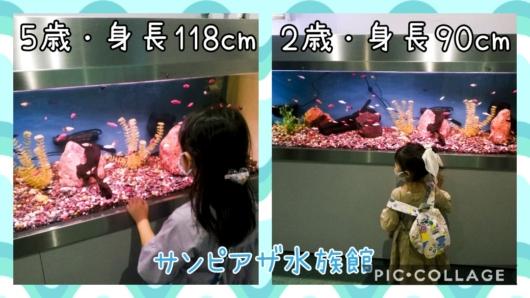 子出かけ子連れお出かけ子連れ旅行5歳2歳新さっぽろサンピアザ水族館熱帯魚