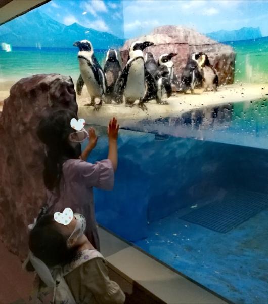 子出かけ子連れお出かけ子連れ旅行5歳2歳新さっぽろサンピアザ水族館ペンギン