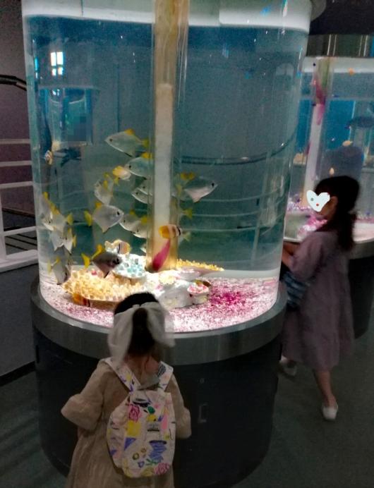 子出かけ子連れお出かけ子連れ旅行5歳2歳新さっぽろサンピアザ水族館熱帯魚縦長水槽