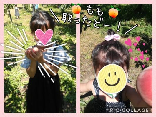 子出かけ子連れ旅行お出かけ北海道余市山本観光果樹園果物狩り夏休み5歳2歳桃