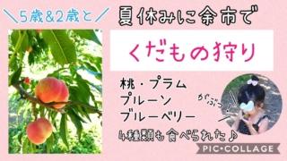 子出かけ子連れ旅行お出かけ北海道余市山本観光果樹園果物狩り夏休み5歳2歳
