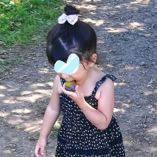 子出かけ子連れ旅行お出かけ北海道余市山本観光果樹園果物狩り夏休み2歳プルーン