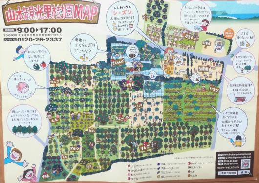 北海道余市山本観光果樹園MAP果物狩り