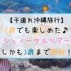 【子連れ沖縄】2歳でも楽しめた!シュノーケルツアー♪しかも3歳まで無料!