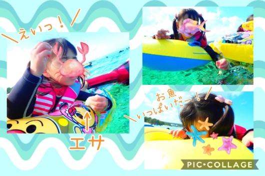 子連れ旅行沖縄シュノーケル真栄田岬エサやり2歳5歳