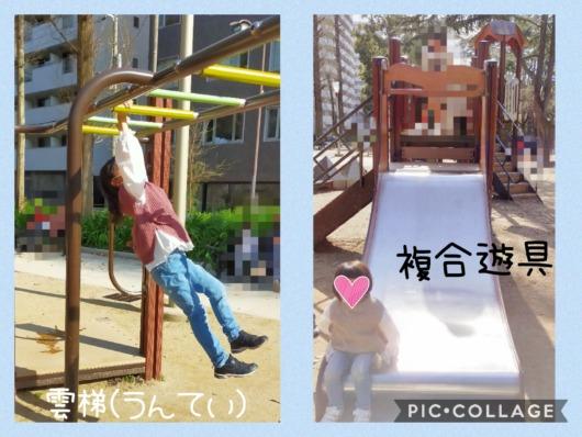 桜開花状況2021年大阪靭公園子連れお花見遊具うんてい雲梯すべり台